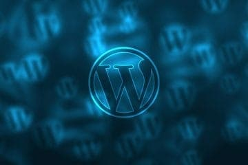 The WordPress Site Structure Explained 1